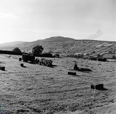 Haymaking, Healaugh and Calver Hill